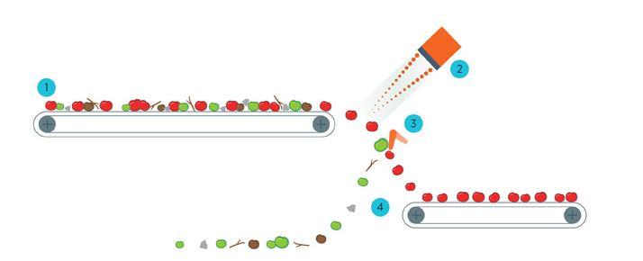 NFM 64 -سورتینگ NFM 64-سورتر شرکت Tomra-سورتینگ گوجه فرنگی-سورتینگ پیاز-tomato sorting machine- اجکتور انگشتی شکل - ejector system -