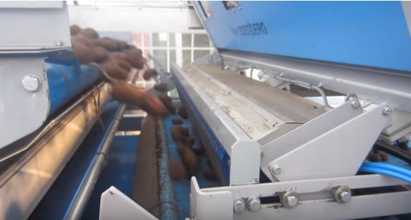 FPS 2400-سورتر FPS 2400-دستگاه سورتینگ FPS 2400-سورتینگ سیبزمینی-potato sorting machine-Tomra sorting machine-